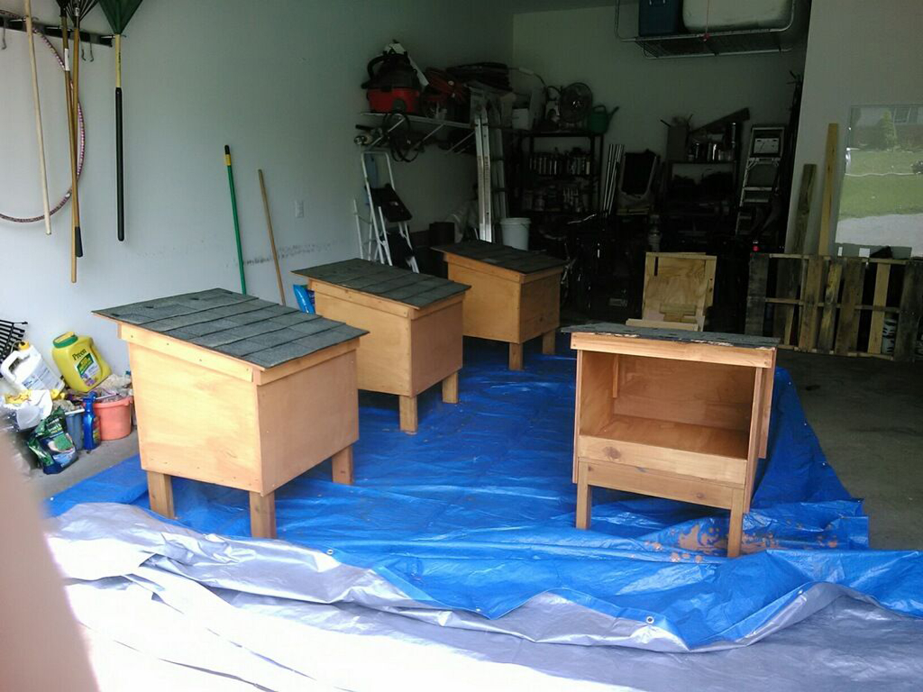 Construction of the new cat feeder houses.