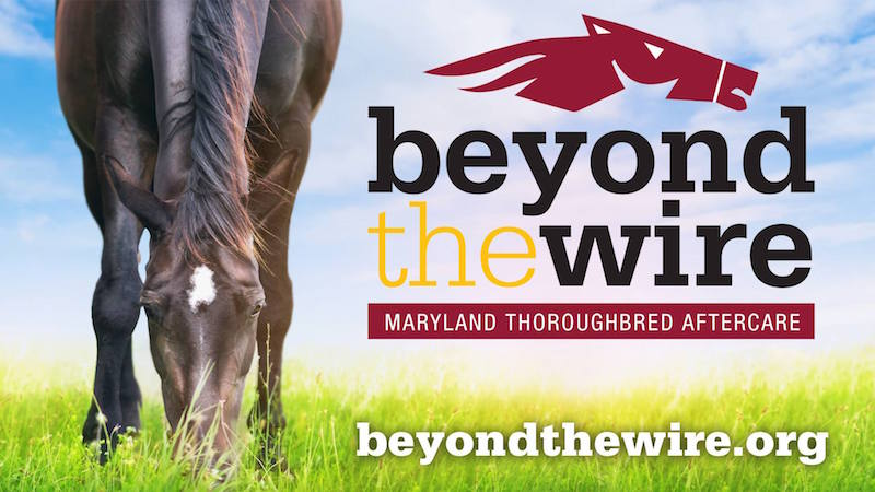 Beyond the Wire logo and website